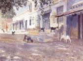 Indian Goats, Bhuj