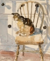 Cat on a Kitchen Chair